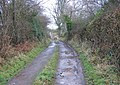 Bridleway Past Rachfynydd - geograph.org.uk - 657977.jpg
