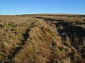 Bridleway and ditch, Petertavy Great Common - geograph.org.uk - 297777.jpg