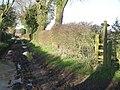 Bridleway and footpath - geograph.org.uk - 1072911.jpg