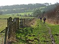 Bridleway below Ibstone - geograph.org.uk - 686076.jpg