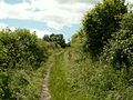 Bridleway to Barnby Furnace - geograph.org.uk - 481761.jpg