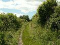 Bridleway to Barnby Furnace - geograph.org.uk - 481761.jpg