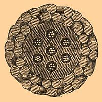 Brockhaus and Efron Encyclopedic Dictionary b26 785-0.jpg