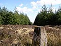 Brockloch Trig Point - geograph.org.uk - 764438.jpg