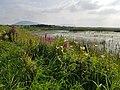 Bunduff Lough, Co. Sligo.jpg