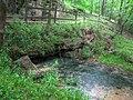 Buzzard Roost Spring - panoramio.jpg