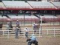 CFD Tie-down roping Trey Young -1.jpg