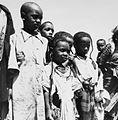 COLLECTIE TROPENMUSEUM Groepsportret van een aantal Fulani kinderen TMnr 20012983.jpg