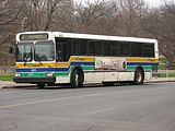 CT Transit New Flyer D40HF 965.jpg