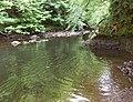 Cairn Water downstream from Dalgonar Bridge - geograph.org.uk - 368852.jpg