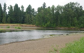 Calapooia River - The Calapooia River at its confluence with the Willamette River, Albany