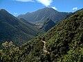 Camino a la Caldera del Pululahua.jpg