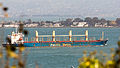 Cape Nelson, Pacific Basin, in the San Francisco Bay-0411.jpg