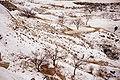 Cappadocia 026 n.jpg