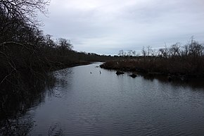 Carmans river, Wertheim National Wildlife Refuge.jpg