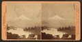 Cascades. Columbia River, Oregon, from Robert N. Dennis collection of stereoscopic views 2.png