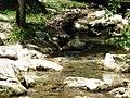 Cascate Molina Fumane giu2013 n56.jpg