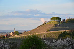 Counts of Castell - The site of the old castle on the hill above Castell