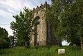 Castles of Munster, Redwood, Tipperary (2) - geograph.org.uk - 2495208.jpg