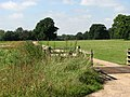 Cattle grid and road to Gunton Hall - geograph.org.uk - 534916.jpg