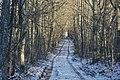 Ceļš - panoramio (20).jpg
