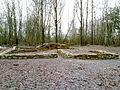 Cech sv. Víta - ruins.jpg