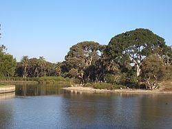 Centennial Park Sydney 2.JPG