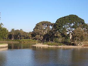 Centennial Parklands - Image: Centennial Park Sydney 2
