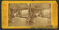 Central Park, Chicago, from Robert N. Dennis collection of stereoscopic views.png