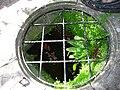ChaliceWell(GB)LookingInToTheWell.jpg