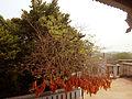 Charchika temple5.jpg