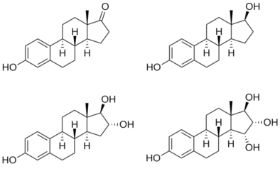 Chemical structures of major endogenous estrogens