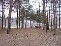 Cherkas'kyi district, Cherkas'ka oblast, Ukraine - panoramio (830).jpg