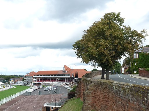 Chester City Walls and racecourse