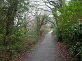 Chewton Common, footpath - geograph.org.uk - 1121636.jpg