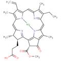Chlorophyllide a.png