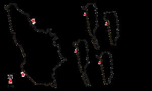 Coppa Ciano - Circuito Montenero - Coppa Ciano