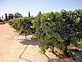 Clos du Val Winery, Napa Valley, California, USA (6863364345).jpg