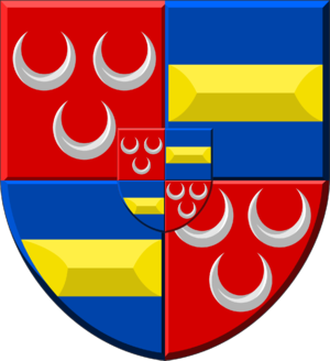 Guy of Avesnes - Image: Coat of Arms Van Duvenvoorde & Van Wassenaer Obdam (enriched)