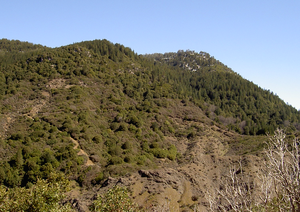 Cobb Mountain - Southwest peak seen from the helipad to the south