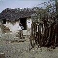 Collectie Nationaal Museum van Wereldculturen TM-20029925 Kunukuhuisje bij landgoed De Knip Curacao Boy Lawson (Fotograaf).jpg