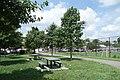 College Point Fields td (2019-08-03) 125.jpg