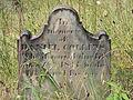 Collins (Daniel), Bethany Cemetery, 2015-08-30, 01.jpg