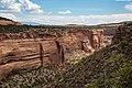 Colorado National Monument (d8170024-4bc0-47b5-813a-0b62d53e0beb).jpg