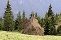Conical Haystacks 03.jpg