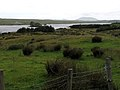Connemara - Inagh Valley - im Regen - panoramio.jpg