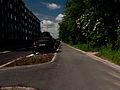 Copenhagen segregated cycle path.jpg
