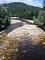 Cornellana - Río Narcea 2.jpg