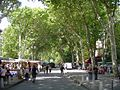 Cours Mirabeau (2852098379).jpg