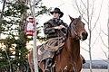 Cowboy in the Wild (Unsplash).jpg